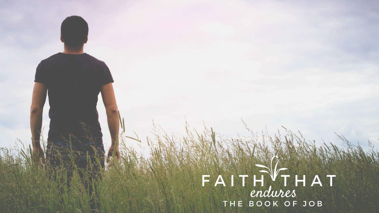 Faith that Endures: The book of Job